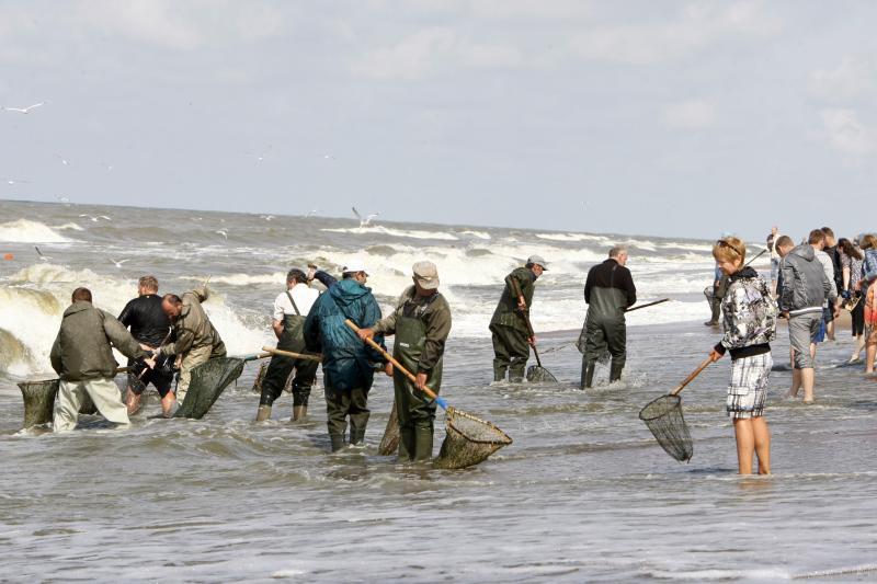 Įsisiautėjusi jūra pažėrė gintarų