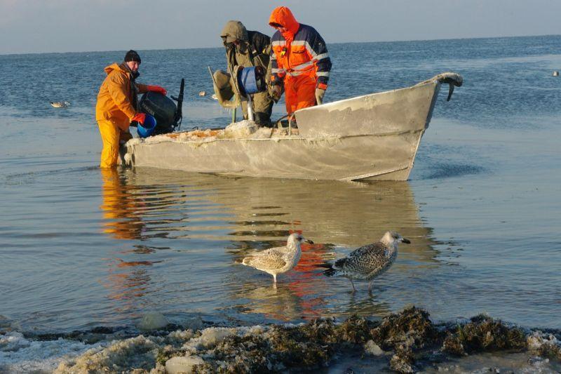 Lietuva – žuvininkystės paradoksų kraštas
