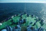 Jūrininkai – ekologijos laivuose aukos