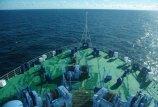"""""""Lietuviškų"""" laivininkysčių pasaulyje – šimtai"""