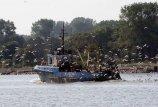 Žvejybos laivų modernizavimas Kaliningrado srityje