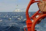 Teisingumo teismas analizuos Lietuvos žvejybą